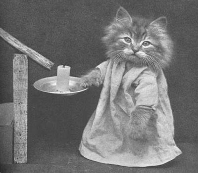 vintage pictures  cats  dogs dressed  people