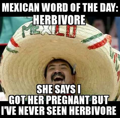 Mexican Word Of The Day Memes - herbivore mexican words pinterest mexican words humor and mexican quotes