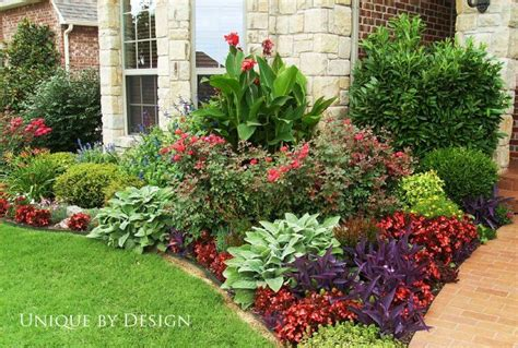 front bed landscaping ideas bay window this bed has canna knock out roses black blue salvia gaura not yet blooming