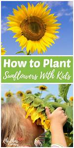 More Spring Activities For Kids