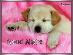 Good Night Puppy Images