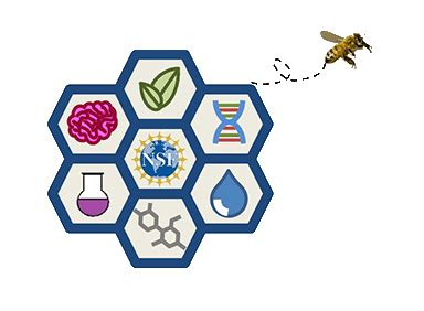 nsf broader impacts bio buzz