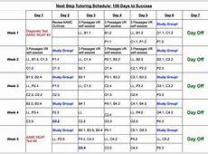 100 Days to MCAT Success A