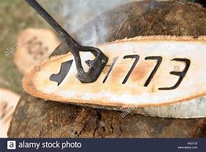 hot branding iron burning the letter e into birch wood With branding letters into wood