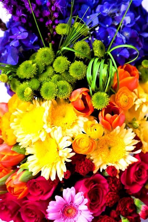 flower colors nature s rainbow flower color color my world pinterest