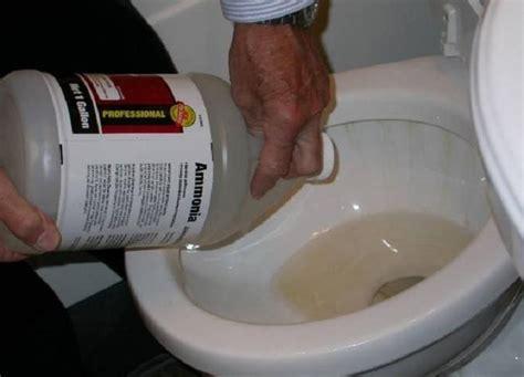 unclog toilet images  pinterest snakes