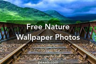 Nature Wallpapers Pexels Desktop Grass 4k Autumn