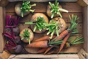 Gemüse Richtig Lagern : mit diesen tricks k nnen sie obst und gem se richtig lagern ~ Whattoseeinmadrid.com Haus und Dekorationen