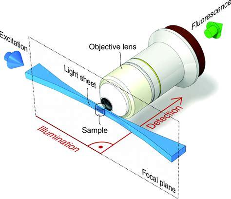 selective plane illumination microscopy techniques in