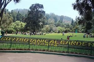File:Botanical Garden in Ooty, Tamil Nadu.JPG