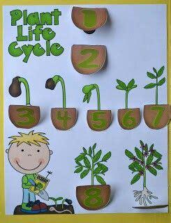 germination let s grow plants soft board 943 | 8f6552487c02647b3238a4c3e3b6343d