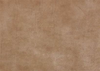 Leather Nubuck Swatch Camel Swatches Furniture