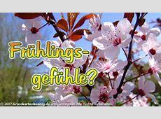 Frühlingsgefühle? Frühling bild #10059 GBPicsOnlinecom