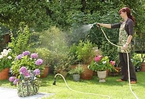 Dekokugeln Für Den Garten : brunnen bohren eigenes wassser f r den garten ~ Orissabook.com Haus und Dekorationen