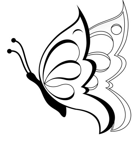 Easy Butterfly Drawing  Drawing Arts Sketch