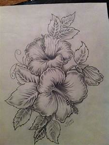 243 best Hibiscus images on Pinterest | Drawing flowers ...
