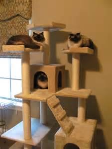 Easy Cat Tree Plans