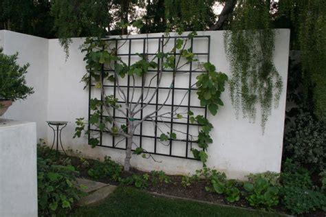 Metal Garden Trellis With Tree Of Design garden metalwork lasting trellis