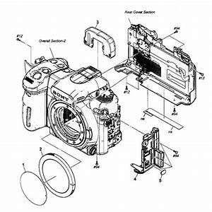 Sony Model Dslr