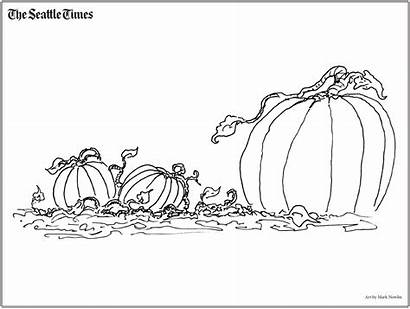 Coloring Countdown Halloween Seattle Times