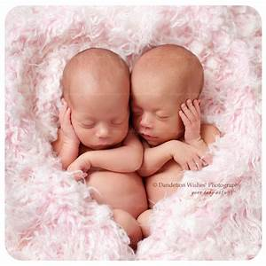 Newborn identical twins photographer to Ashburn VA 20146 ...