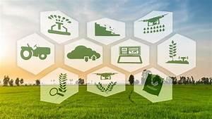 Agriculture 4.0, les robots arrivent en grandes cultures