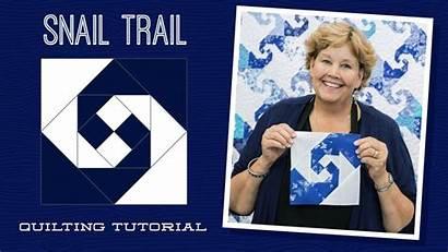 Snail Quilt Trail Jenny Missouri Star Tutorials