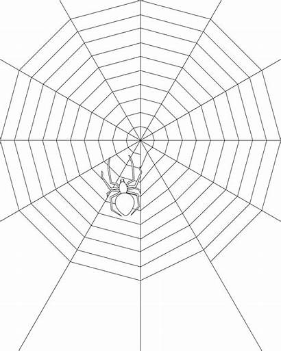Coloring Spider Web Pages Printable Spiders Bestcoloringpagesforkids