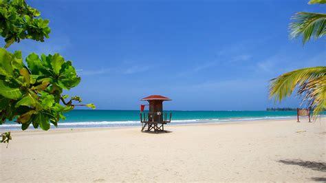 air caraibes reservation si鑒e vacances à isla verde réservez votre séjour sur expedia fr