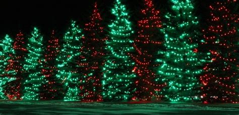 where to find calgary s best christmas lights