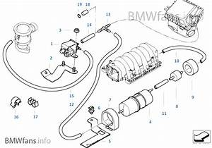 2005 Bmw X5 Vacuum Diagrams Within Bmw Wiring And Engine