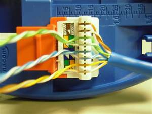 The Trench  How To Punch Down Cat5e  Cat6 Keystone Jacks