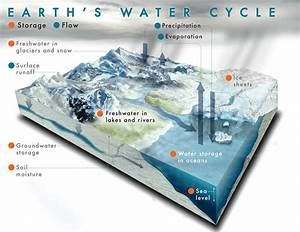 precipitation and the water cycle science pickle