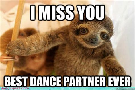 Best Sloth Memes - i miss you best dance partner ever i miss you baby sloth quickmeme