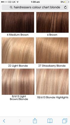 light ash brown hair color chart light ash brown hair color dye pictures chart on black