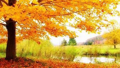Scenery Autumn Desktop Wallpapers Iphone Definition