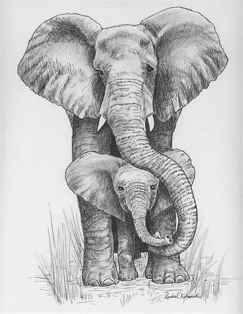 Épinglé sur elefantes