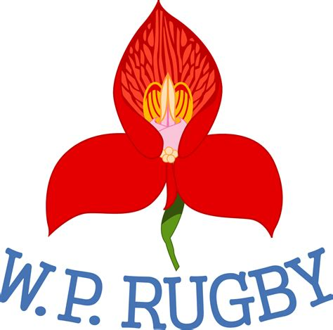 Operation To Save Wp Rugby Underway