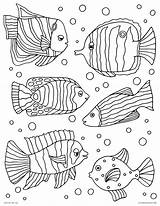 Coloring Fish Pages Tropical Exotic Printable Palette Adults Print Nature Colorful Landscapes Elements Organic Inspired Natural Getdrawings Getcolorings Astonishing sketch template