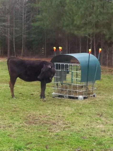 wasted  nope mini hay feeder