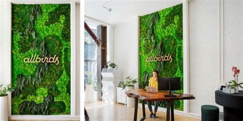 work places installing plant walls to attract millennials business insider