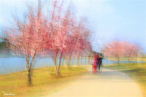 photo impressionism     camera   digital