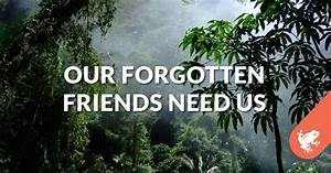 Our Forgotten Friends Need Us