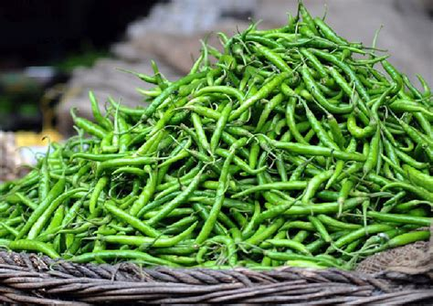 More than 10 health benefits of green chillies, Health ...