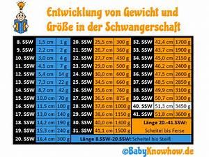 Gewicht Baby Ssw Berechnen : 40 ssw wie sie geburtsanzeichen deuten wehen f rdern ~ Themetempest.com Abrechnung