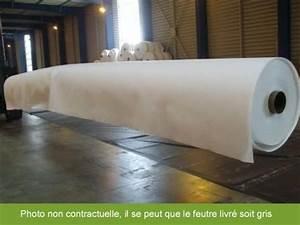 Feutre Geotextile Pour Gravier : feutre g otextile pour bassin au m2 ~ Premium-room.com Idées de Décoration