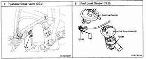 2003 Hyundai Santa Fe Purge Valve Location  2003  Free