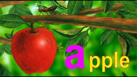 alphabet letter   case youtube