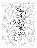 Georgia Coloring Pages Bulldog Getcolorings Printable sketch template