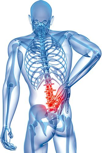 Low Back Pain In Rowers Part 2 • Rowperfect Uk. Retirement Communities In Houston. Wireless Satellite Internet Kaiser Law Group. Ladbury Funeral Home Dickinson North Dakota. Regent Care Oakwell Farms B J Medical College. Medical Transcription Education Requirements. Ford Dealer Grand Prairie Tx. American Heart Association Acls Test Answers. Jeep Cherokee Minneapolis California Rape Law